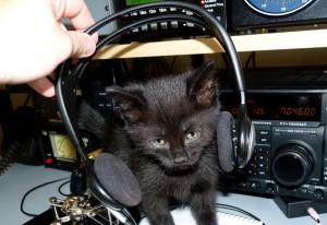 New second operator….
